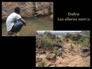 dafra1